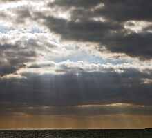 Rays of light by Gary Rayner