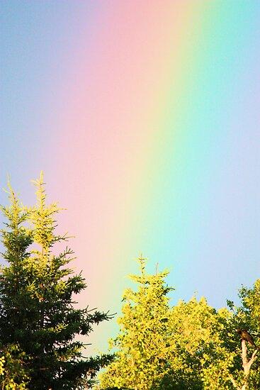 I Can Sing A Rainbow by Leslie van de Ligt