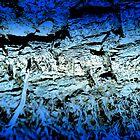 Blue Bark by HeavenOnEarth