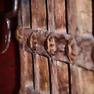 The Door by HeavenOnEarth
