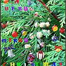 Colourful Conifer Christmas Card by BlueMoonRose