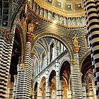 Duomo, Siena by Malcolm Clark