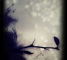 Sorrow by Sybille Sterk