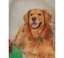 Abigail's Christmas Portrait Photographic Print