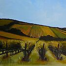 Tuck&#x27;s Ridge vineyard, Mornington Peninsula. Elizabeth Moore Golding 2009 by Elizabeth Moore Golding