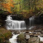R. B. Ricketts Falls in Autumn by Tim Devine