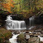 R. B. Ricketts Falls in Autumn by Tim Devine
