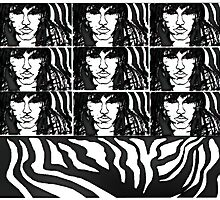 SANDOKINA, ZEBRA WALLPAPER by REKHA Iyern [Fe] Records Canada