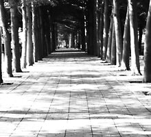 Corridor of Memories by yiching