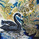 Black Swan &amp; Tree Ferns. by HelenD