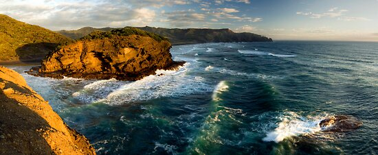 Wild West Coast by Michael Treloar