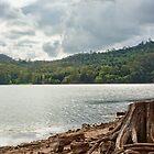 Lake Baroon by jayneeldred