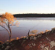 Gorgeous Lake Ballard by Cheryl Parkes