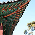 Changgyeong Palace Eaves, Seoul, Korea by Jane McDougall