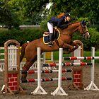 Millstreet horse show, Co.Cork,Ireland, 2011 by Igors