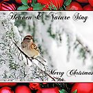 Tree Sparrow Christmas Card Winter Scene by Michael Mill