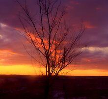 Winter Sunset on the Prairies 2 by oliverjm