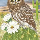 Elf Owl by Walter Colvin