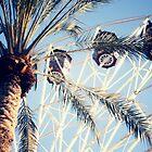 Ferris Wheel by Kameron Walsh