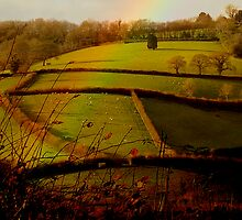 South Ham Fields .. by Mike  Waldron