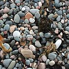 Pebble Beach with Seaweed by Colin Bentham
