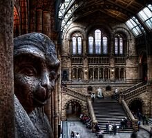 NHM Left Monkey by Alan E Taylor