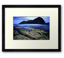Lion Rock 1 Framed Print