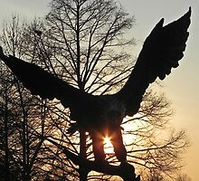 Eagle and sun by bannercgtl10