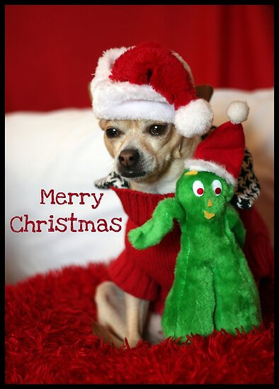 Holiday Greetings from Lacy & Gumby by AngieBanta