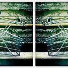 Trolley Diptych-2 by Steve Lovegrove