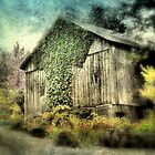 The Wonderville Barn by Donnie Voelker