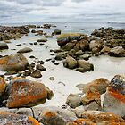 Bay of Fires 1 by Harry Oldmeadow