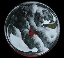 Cindy's Snow Globe's 6 by dge357