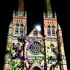 Weeds | St. Mary's Cathedral Sydney | 2011 by Bill Fonseca
