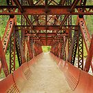 Rusty Bridge by Inge Johnsson