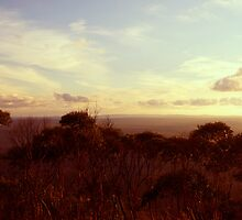 View  from Mt Macedon by Jane  mcainsh