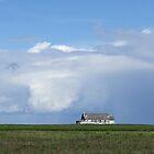 Prairie Sea by Rachel Sonnenschein