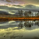 Rannoch Moor, Glencoe, Scotland by Gabor Pozsgai