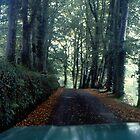 A Road in Wales by BearheartFoto