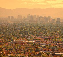 Phoenix Valley Of The Sun by Bo Insogna