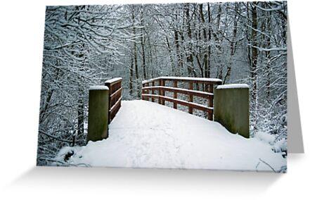 Bridge between white worlds by steppeland