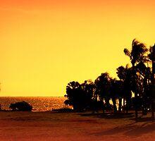 Safety Harbor, Florida by AuntDot