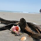 Seashell on the sand at the ocean beach 5 by Anton Oparin