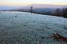 Ozark Frosty Morn by NatureGreeting Cards ©ccwri