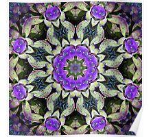 Purple Bromeliad Poster