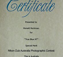 Awarded and Exhibited  by Ronald Rockman