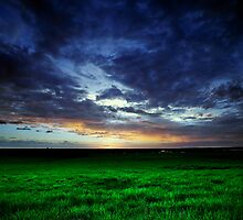Hervey Bay Farm Sunset by Peter Doré
