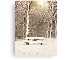 Snow Covered Bench in Ruff Wood Canvas Print