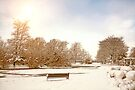 Coronation Park Lake - Snowy Ormskirk by Liam Liberty