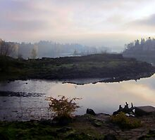 Willamette River and Elk Rock Island by Patricia  Butler